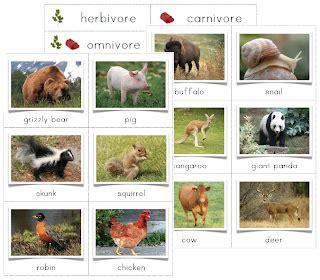 The Helpful Garden Herbivore, Carnivore, Omnivore Sorting Cards