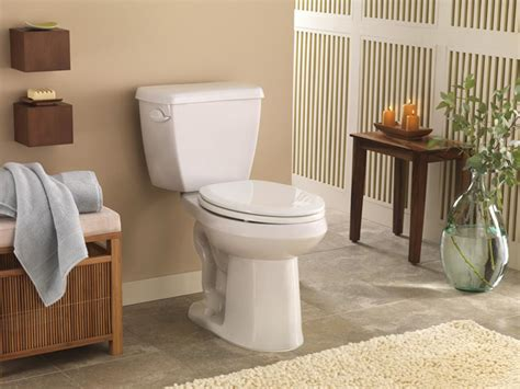 Bluss Sassy Tolet tips for buying a toilet hgtv