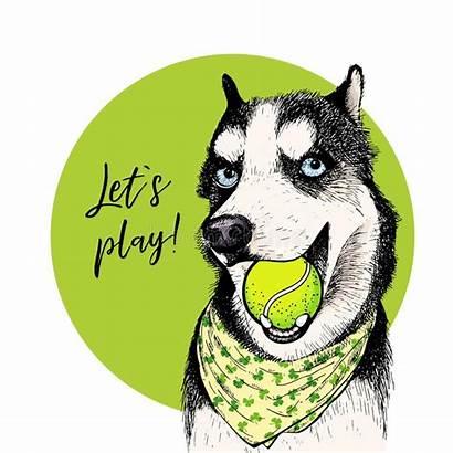 Husky Cartoon Illustration Dog Let Vector Siberian