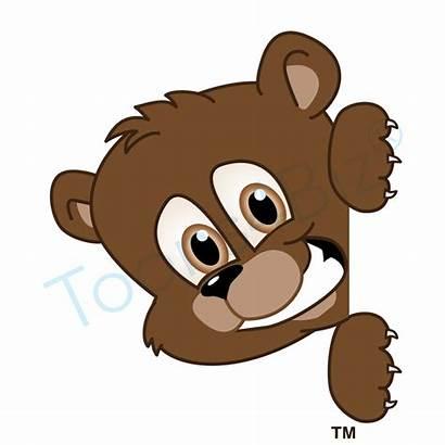 Bear Clipart Peeking Cub Cartoon Bears Mascot