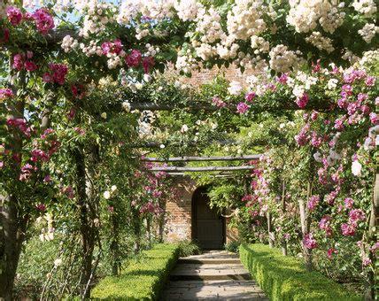pergola rose walk  walled garden polesden lacey