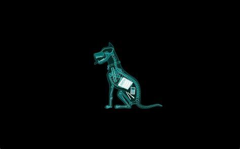 Pixel Art Landscape Wallpaper Funny Animal Backgrounds Pictures Images