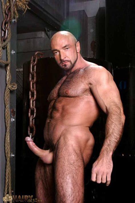 Xerxes Porn Star Web Sex Gallery
