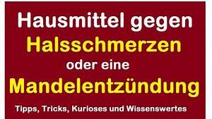 Hausmittel Gegen Mäuse Und Ratten : hausmittel gegen halsschmerzen oder eine mandelentz ndung ~ Michelbontemps.com Haus und Dekorationen