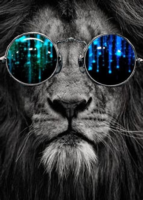 lioninshades mrtibbs