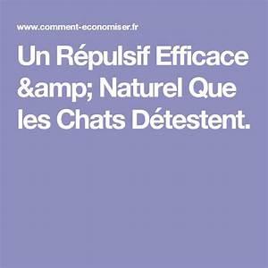 Repulsif Pour Chat Exterieur : 15 pingles r pulsif chat naturel incontournables ~ Dailycaller-alerts.com Idées de Décoration