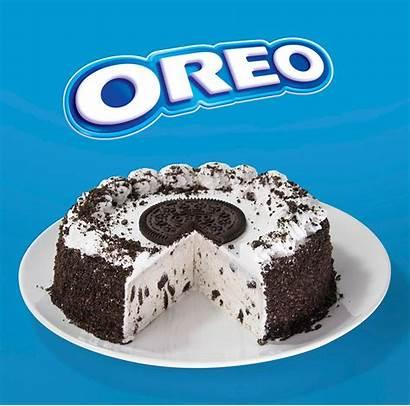 Ice Cream Cake Cakes Want Enjoy