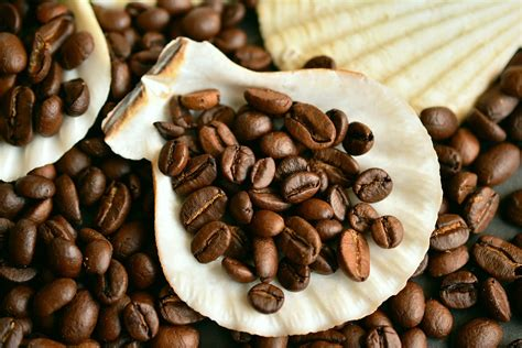 Coffee suppliers we are suppliers of coffee beans, filter coffee, and tea supplies. Top 5 Wholesale Coffee Beans Companies Sydney   Suppliers   October 2020