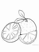Grapefruit Almofadas Artesanais Riscos Pomelo Gaddynippercrayons sketch template