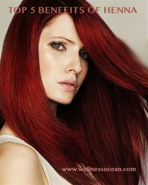 what gives hair its color 74 best images about h e n n a on indigo