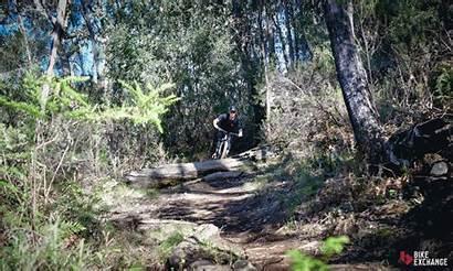 Enduro Trail Explained Mtb Bikes Mountain Electric