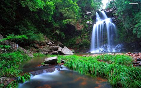 Free photo: Exotic Waterfall - Scape, Parks, Peace - Free ...