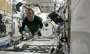 Living Astronauts in Space (page 3) - Pics about space