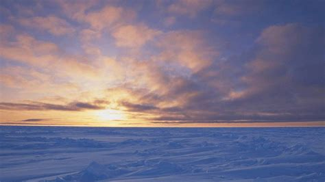 Arctic Background 4k Arctic Wallpapers High Quality Free