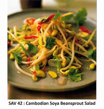 Sprouts Salad Bean Sav