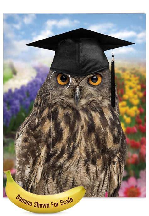 wise  owl petigreet graduation greeting card