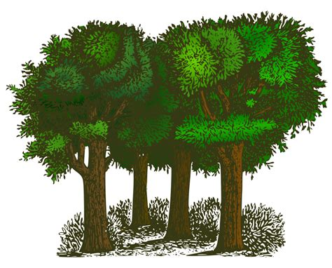 tree clipart free tree images free free clip free clip