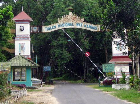taman nasional  kambas wikipedia
