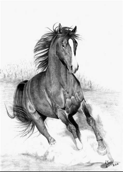 horse running horses pencil drawings drawing sketch sketches deviantart stained kentucky glass channel deviant
