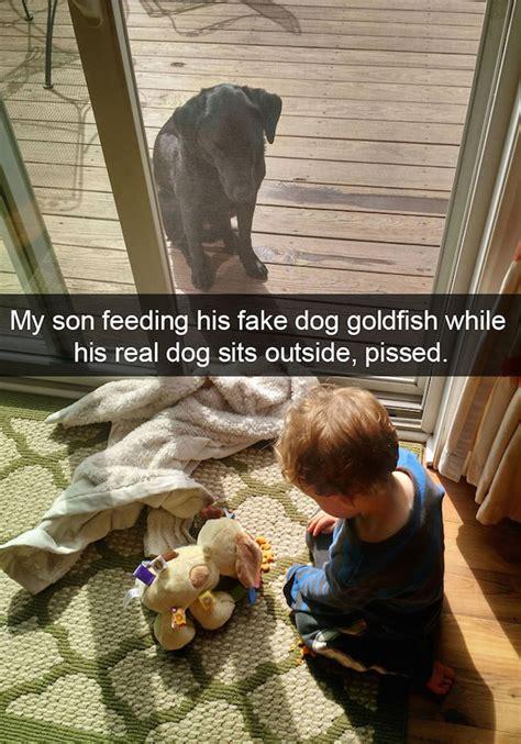 funniest dog snapchats  mastered  art