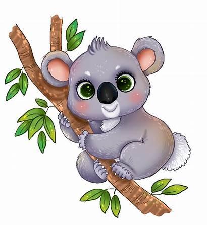 Koala Clip Clipart Cliparts Animated Bear Transparent