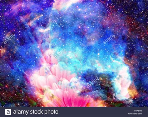 Space and stars with flower, color galaxi background