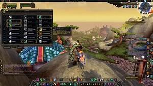 Windl U00e4ufer M U00f6nch  Windwalker Monk  Guide