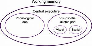 1, The, Different, Components, Of, Baddeley, U0026, 39, S, Working, Memory, Model