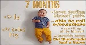 7 Month Old 39 S Developmental Milestones A Complete Guide