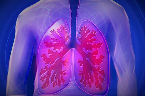 respiratory chronic diseases disease kidney biomarker common indicator could copd lungs invasive procedure succour minimally patients offers