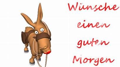 Morgen Guten Bilder Lustig Gifs Donkey Kiss