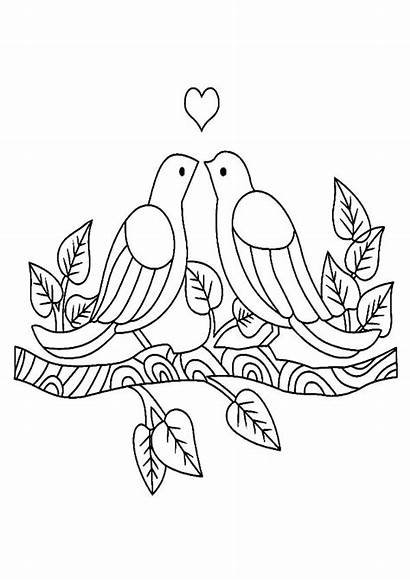 Coloring Birds Pages Bird Branch Sitting Drawing