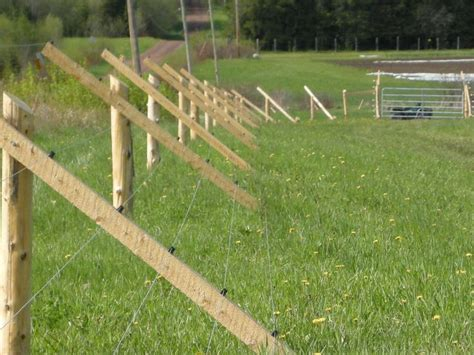 25 best ideas about deer fence on garden