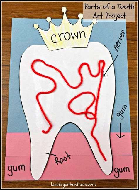 ultimate list of dental health activities for the classroom 958 | Parts of a Tooth Art Project 1 753x1024