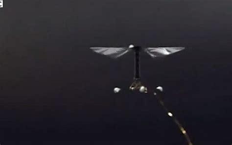 VIDEO: Znanstvenici stvorili najmanjeg robota na svijetu ...