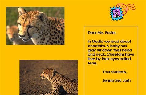 zoo postcard