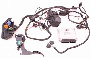 24v Vr6 Engine Motor Swap Wiring Ecu Vw Jetta Golf Gti Mk1