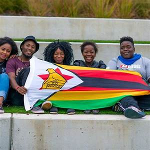 Zimbabwe Youth Council To Launch National Youth Colors ...