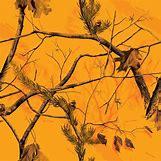 Orange Realtree Wallpaper   720 x 720 jpeg 113kB