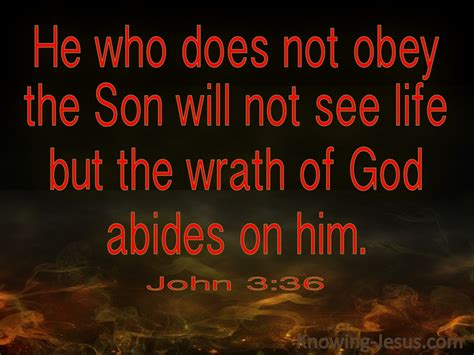 36 He Who Believes Has Eternal Life (red