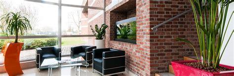 location de plantes et mobilier nature vegetale longue dur 233 e lille