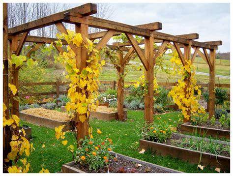 large grape arbor plans outdoor decorations grape
