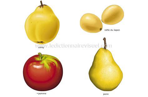 jeux de cuisine virtuel alimentation et cuisine gt alimentation gt fruits gt fruits à