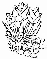 Flower Coloring Pages Printable Print Flowers Spring Sheets Floral Adults Teenagers sketch template
