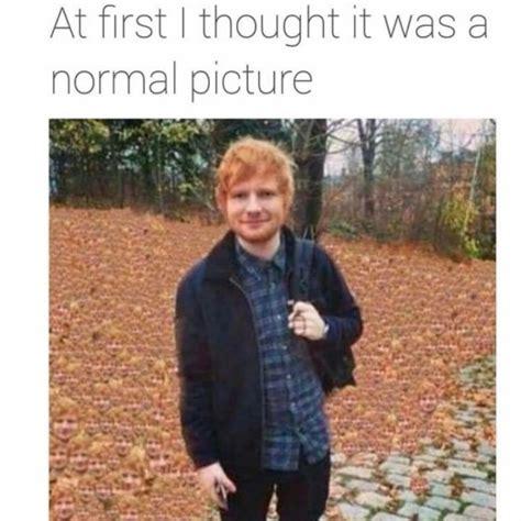 Ed Meme - ed sheeran meme on tumblr