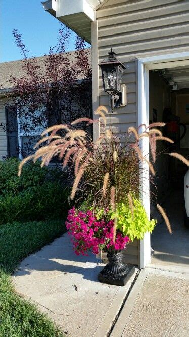 purple grass container ideas 412 best images about container gardening on pinterest window boxes container plants and fall