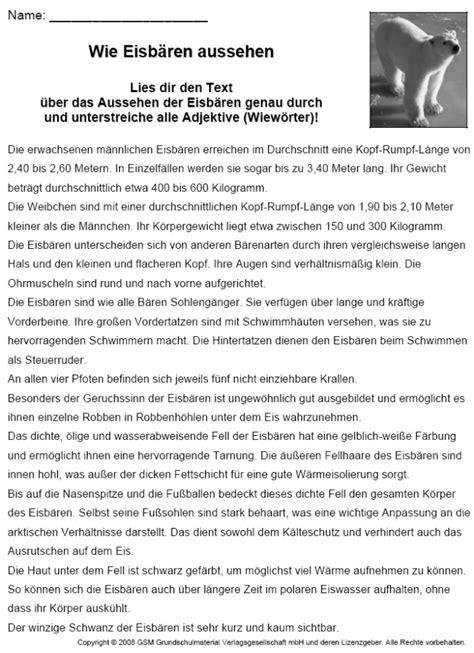 eisbaeren sachtext steckbrief  deutsch lernen