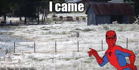 I Came Meme - image 729228 i came know your meme
