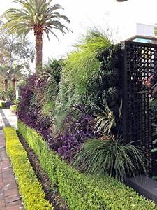 Commercial Green Wall Photo   Growing Well Sydney Nsw
