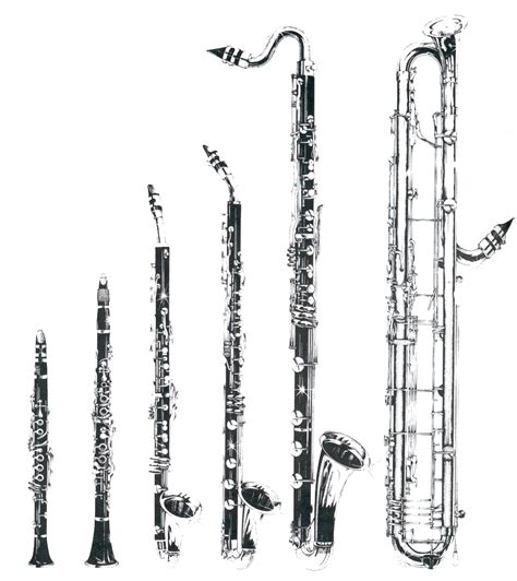 a picture of the clarinet family from left e flat clarinet b flat clarinet basset horn